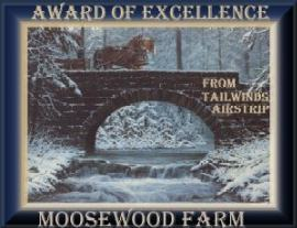 award of excellence from Tailwinds